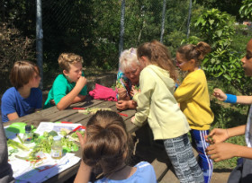 An Engaging Lesson in the Edible Garden
